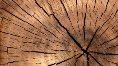 Opalarka do drewna
